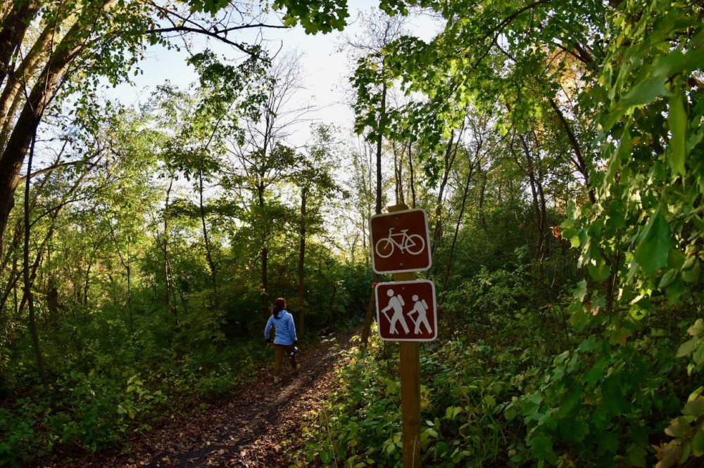 Runestone Trail Sign