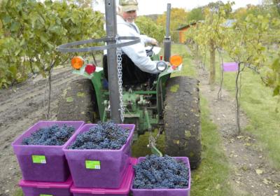 burr vineyards tractor