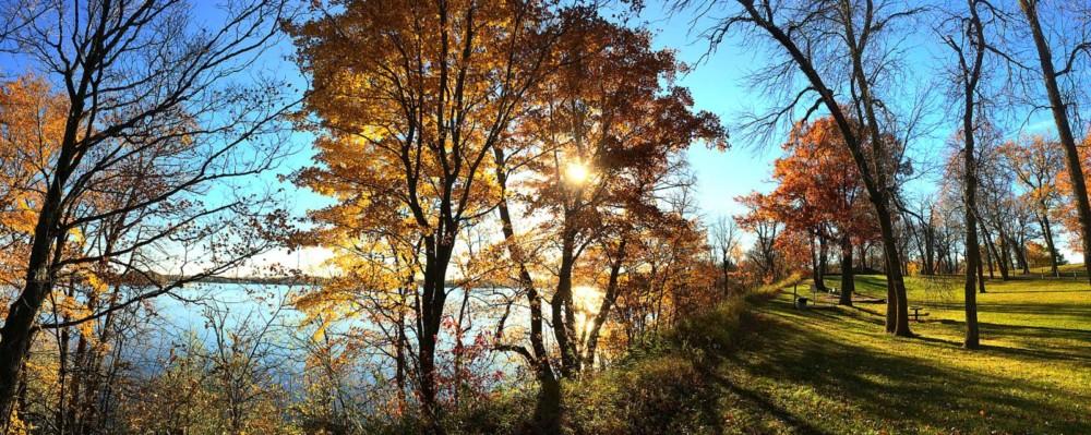 lake-brophy-wayside