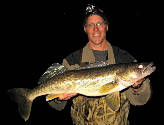 nice 23 inch walleye