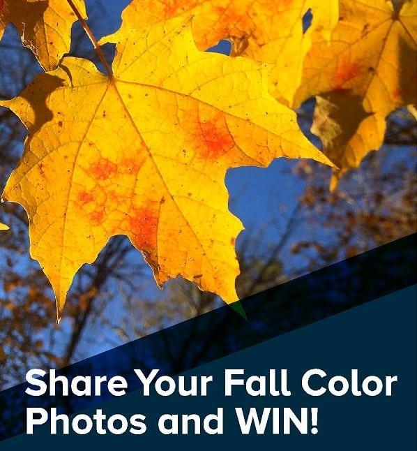 Photo-Contest-Banner-Copy