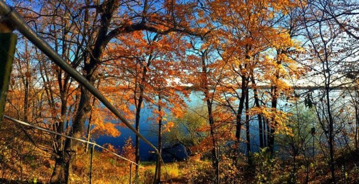 lake brophy wayside2