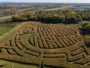 Country Blossom Farm Corn Maze. Photo by John Magnoski