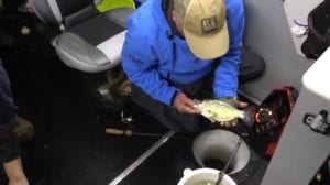 ice fishing crappie pic
