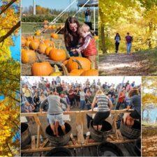 Explore Alexandria Fall MSP Aim pic